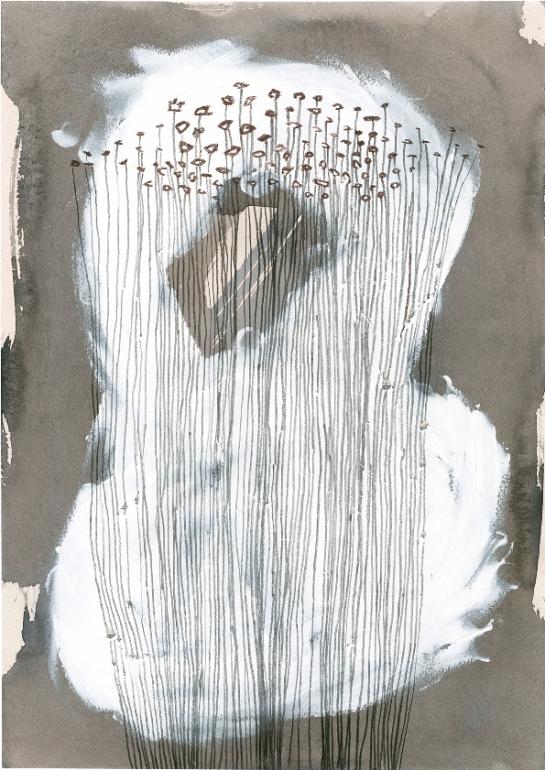 DaphneCorregan